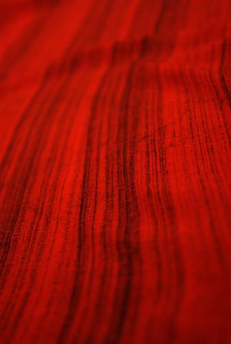 Red Tracks (2) - IMGP5119