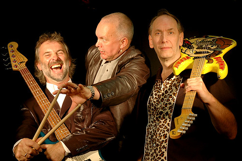 Hamsters - drumsticks