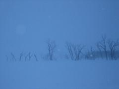 IMG_0024.JPG (tony_bibbs) Tags: outdoors fishing tony icefishing