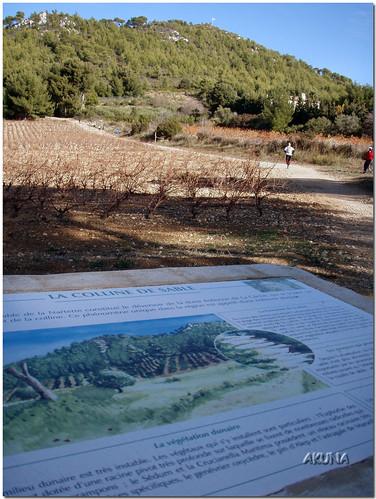 Trail St Cyr 2007 (122)tuned