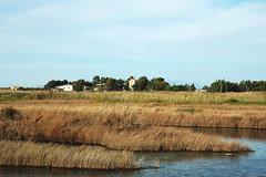 S'Ena Arrubia pond (Sirbonetta) Tags: sardegna pool landscape pond nikon sardinia wetlands stagno blueribbonwinner zoneumide abigfave impressedbeauty senaarrubia sirbonetta