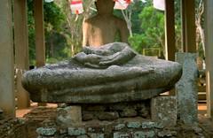 Samadhi Buddha Statue Buddha Statue Remains
