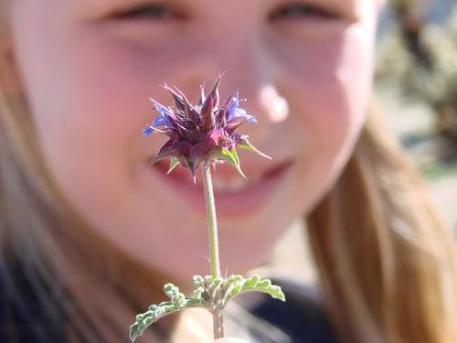 Jakes favorite flower