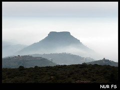 ALT DEL PI (SERRA) (NUR FS) Tags: mountain valencia paisaje serra montaa niebla boira altdelpi