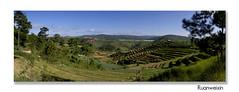 Vuon-rau-Trai-Mat---K (KhoanTuong - KhoaTran) Tags: landscape phongcảnh