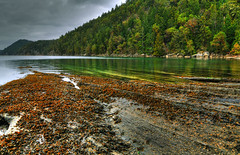Emerald Waters (Len Langevin) Tags: ocean canada water spectacular island coast nikon bc pacific galiano scenic tokina1224 vancouverisland shore westcoast emerald hdr d300 scenerey photomatix aplusphoto shoerline beautifullandscapephotography