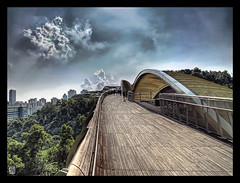 Henderson Waves Bridge (Gee!Bee) Tags: bridge singapore waves e300 henderson hdr lucisart zd 3xp photomatix 1445mm
