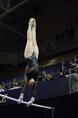 2017-02-11 UW vs ASU 31 (Susie Boyland) Tags: gymnastics uw huskies washington