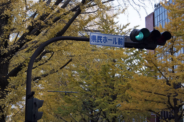 20101127_153529_横浜_山下公園