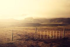 Barreras al campo (oo Felix oo) Tags: light sun luz sol field iceland islandia campo valla felixmartinez