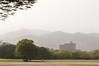 Shinning Sunny Day (Carlos Nizam) Tags: park yellow japan day sunny hiroshima