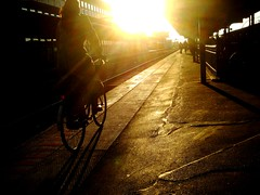 Copenhagen Train Station Bike Riding * (Mikael Colville-Andersen) Tags: street sunset girl station bike bicycle silhouette backlight train denmark cycling platform streetphotography trainstation cycle bella chic danmark  roskilde mindthegap  solnedgang bikeporn cykel streetfashion     streetstyle girlsonbikes 100faves  sunsetseries modlys bikeadvocacy cyclechic backlightaciousness copenhagencyclechic criticalmassissolastcentury fixedgearissoooolastcentury velopassioncc