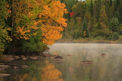 Autumn lake - Lac d'automne (Luc Deveault) Tags: autumn lake canada cold color nature leaves forest automne canon interestingness quebec colorfull lac peaceful du fresh explore qubec luc rebelxt soe froid paysages fort frais monttremblant feuilles touched quenouille paisible theoneonly colorphotoaward infinestyle photoquebec lysdor deveault lucdeveault