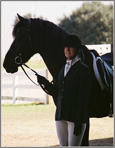 Quiets tame horses. 1607095859_8a4fb14c1c