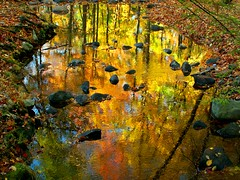 River of Molten Colors (Stanley Zimny) Tags: park autumn trees red orange reflection tree green fall nature colors leaves yellow automne reflections river catchycolors leaf bravo perfect rocks colorful colours photographer seasons natural fallcolors vivid autumncolors fourseasons reflexions autumnal colorexplosion 4seasons the ringwood mostfav supershot 25faves mywinner abigfave platinumphoto unature diamondclassphotographer ysplix unaturefav colourartaward excapture theperfectphotographer top20autumn parkcolors mfsz