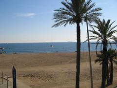 Platja de la Barceloneta (J.P. Enright) Tags: barcelona espaa spain catalonia catalunya catalua ciutadella espanya platjadelabarceloneta vilaolmpica