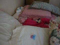 sleepy baby in a nest