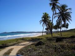 Praia dos Golfinhos / Enseada dos Corais (fermeggy) Tags: ocean sea brazil praia beach brasil mar dolphin atlanticocean pernambuco golfinhos oceanoatlantico enseadadoscorais