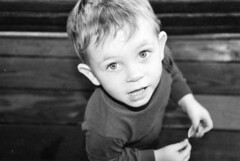 he has since grown into his ears (photosaladanielle) Tags: portrait kid child andrew grin brighteyes grasp