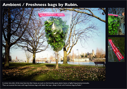 rubin_bag