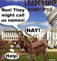Leadership Democratic Donkeys