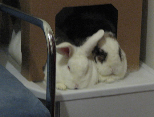 side by side snuggling