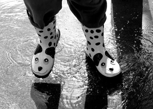 Dalmatian Boots