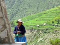 Peru - Woman from Colca Canyon (danieleb80) Tags: peru southamerica canyon arequipa colca colcacanyon sudamerica peruvianpeople blueribbonwinner thecontinuum peruvianimages peruwoman