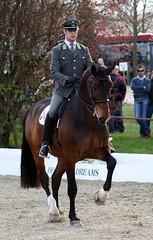 Grand Prix Hagen (neulands) Tags: horse cheval pferde hagen horsesanddreams