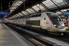 TGV Lyria - 4411 (Szászgáspár Szabolcs) Tags: tgv lyria zürich hb switzerland swiss zug trains tren vonat svájc mozdony elvetia