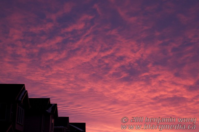 Cotton Candy Sky IMG_9265