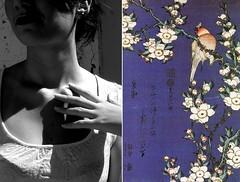 sara's postcard. (anna☆morosini) Tags: anna sara cartolina dittico morosini