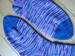 Blue-toe Koigu socks