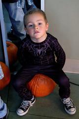 Sitting on a pumpkin... (Thomas Wasper) Tags: halloween pumpkin timtom