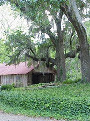 46 An Outbuilding at Longwood - Natchez Mississippi (sunnybrook100) Tags: mississippi natchez mansion antebellum longwood adamscounty nationaltrustforhistoricpreservation nthp