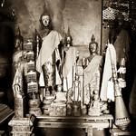 The dead buddhas