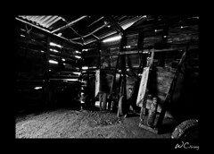 Carretillas (WillieChiang) Tags: bw white house black 20d canon lights dominican shadows dominicanrepublic salinas tropical caribbean wheelbarrows efs1022 carretillas