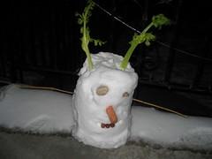Snow Bucket Man 3