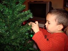 Decorando el árbol