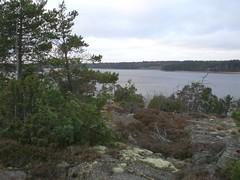 CIMG1611 (angela-hh) Tags: finland aland bluepenguins