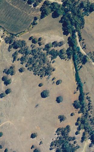 aerial photo of milkwood