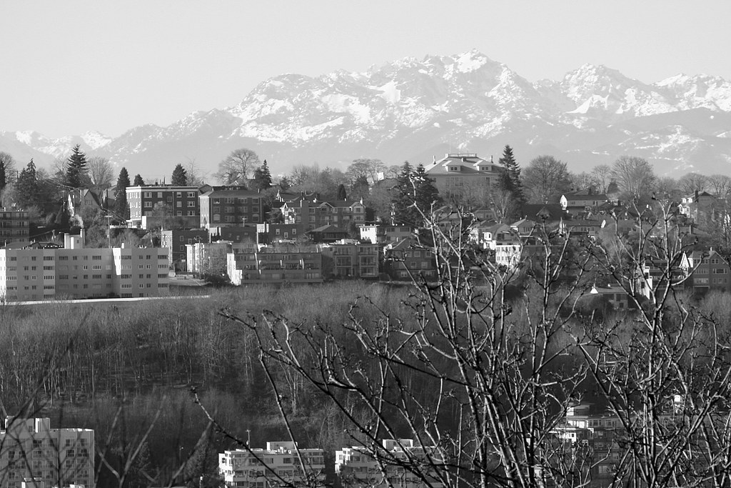 Olympics Seen Beyond Queen Anne Hill