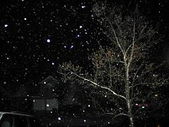march_snow08 003
