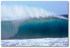 Banzai Pipeline (chgroth) Tags: blue water wow hawaii surf wave welle top20waterpix ehukaibeachpark oahuhawaii anawesomeshot colourartaward beautifulsecrets