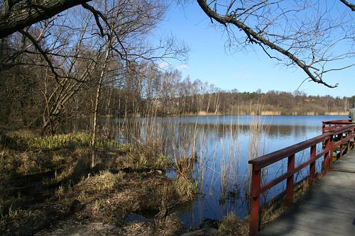IMG_2908_vid lillsjön_vår