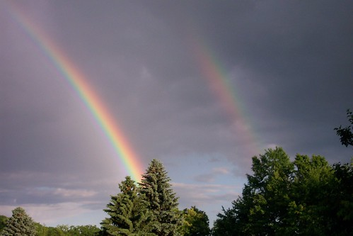 rainbow by metroman8