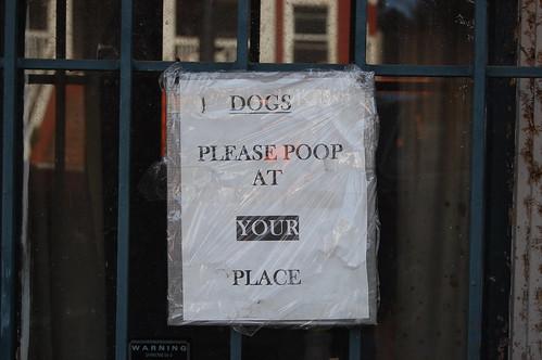 Please Poop