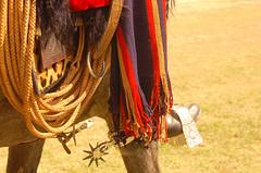 El lazo (Eduardo Amorim) Tags: horses horse southamerica argentina criollo caballo cheval caballos lazo spur spurs cavalos sperone pferde poncho cavalli cavallo gauchos pferd pampa yara pala apero chevaux gaucho staffa amricadosul stirrup carona paniolo lao platera gacho estribo campero amriquedusud provinciadebuenosaires recado gachos sudamrica sanantoniodeareco esporas suramrica amricadelsur areco sdamerika crioulo caballoscriollos criollos nazarenas nazarena espora pilchas espuelas pilchasgauchas steigbgel recao pampaargentina camperos americadelsud talero plateracriolla rebenque espuela crioulos cavalocrioulo americameridionale caballocriollo campeiros campeiro eduardoamorim cavaloscrioulos estrivo trier pampaargentino