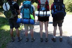 Kuitenstudie (oemebamo) Tags: trekking hiking ardennes trektocht netlog btgenbach