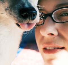 Day 160: Raspberry (Angela.) Tags: dog selfportrait chihuahua silly tongue digital canon nose rebel glasses raw lulu explore chi canonef35mmf2 angela spacegirl 365days explored xti 400d 366days canondigitalrebelxti dogmg1909
